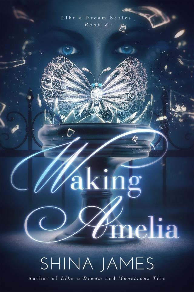 Waking-Amelia-Amazon-Ebook